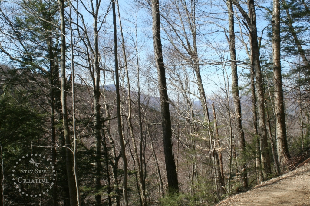 Mountain views from Lye Brook Falls Trail in Manchester, Vermont