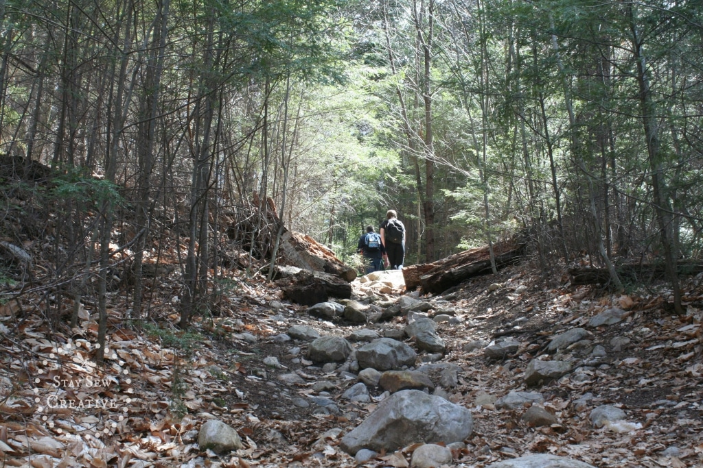 Rocky section of Lye Brook Falls Trail in Manchester, VT