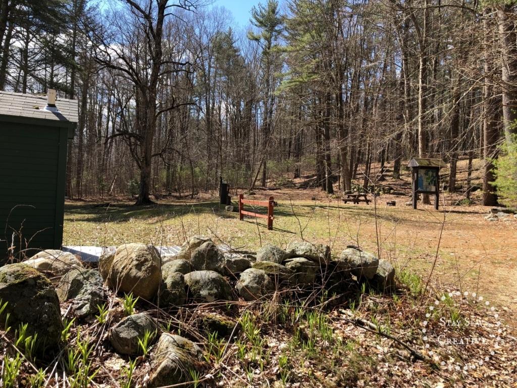 Group campsite area
