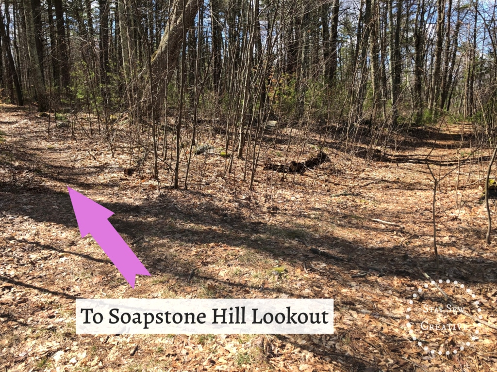Path to Soapstone Hill Lookout